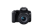 Canon EOS 200D Mark II w/EF-S 18-55mm f/4-5.6 IS STM Lens Digital SLR Camera